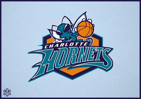 The 20 Best Fan-Designed Logos For The 2014 Charlotte Hornets
