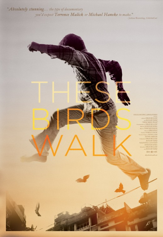 these_birds_walk