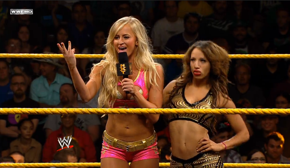 The Best And Worst Of WWE NXT 10/9/13: Emmer, I Will Hurt You