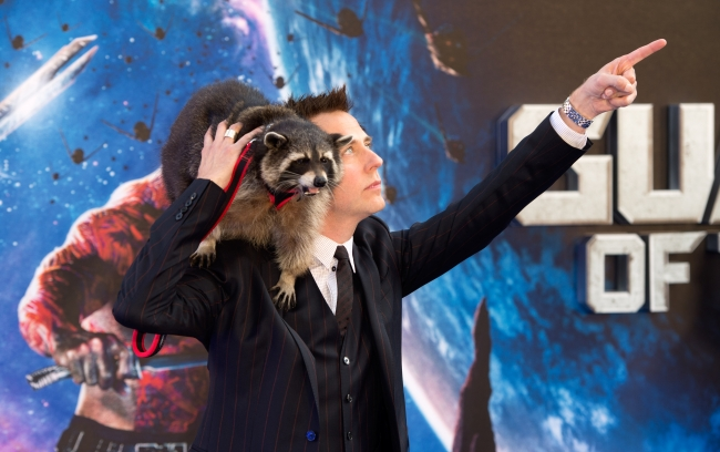 """452621870.jpg """"Guardians Of The Galaxy"""" - UK Premiere - Red Carpet Arrivals - James Gunn""""Guardians Of The Galaxy"""" - UK Premiere - Red Carpet Arrivals - James Gunn """"Guardians Of The Galaxy"""" - James Gunn and a raccoon at the UK Premiere - Red Carpet Arrivals LONDON, ENGLAND - JULY 24:  James Gunn attends the UK Premiere of """"Guardians of the Galaxy"""" at Empire Leicester Square on July 24, 2014 in London, England.  (Photo by Samir Hussein/WireImage)"""