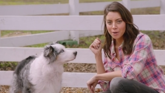 Aubrey Plaza And Newcastle Team Up To Take Down 'Big Game Beer Commercials'