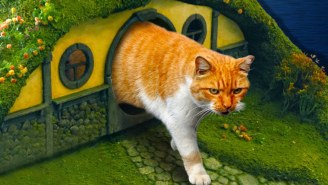 This Lord Of The Rings-Themed Hobbit Hole Cat Litter Box Is Pretty Purrrfect