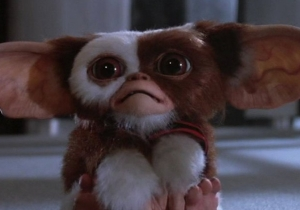 The 'Gremlins' Reboot That Shouldn't Happen Might Not Happen After All