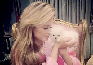 Paris Hilton Named Her New Puppy After Herself. We Have Reached Peak Paris Hilton.