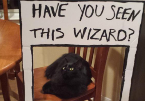 The Coolest Friend Ever Turned This House Into A Discount 'Harry Potter' World As A Birthday Surprise