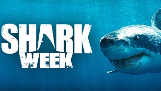 Discovery To Dial Back The Scare Tactics In This Year's 'Shark Week'
