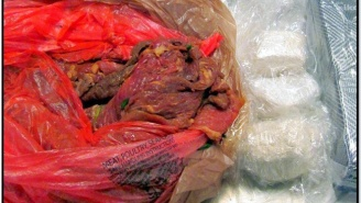 The TSA's 2014 List Of Confiscated Items Includes A Real Cannon And 3 Lbs Of Cocaine Stuffed Raw Meat