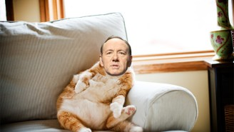 Barry Sonnenfeld's 'Nine Lives' Will Star Kevin Spacey As A Businessman Who Swaps Bodies With A Cat