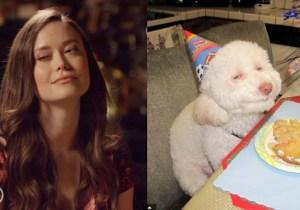 Watch Summer Glau Imitate Animal Memes On The Latest Episode Of 'Speakeasy'