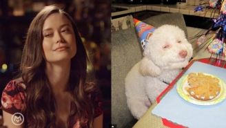 Watch Summer Glau Imitate Animal Memes On The Latest Episode Of 'Speakeasy'