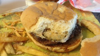 This Is What A Two-Year Old McDonald's Cheeseburger Looks Like