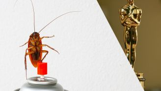 Some Rain And A Few Non-Medical Roaches Could Crash The Oscars Tonight