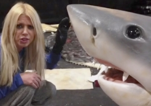 Tara Reid's Vines From The Set Of 'Sharknado 3' Are Everything You Could Ever Hope For