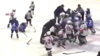 Watch This 8-Year-OId Deliver A Horrid Cheap Shot During A Hockey Brawl