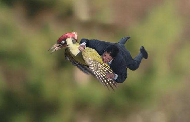 Weasel-Flight