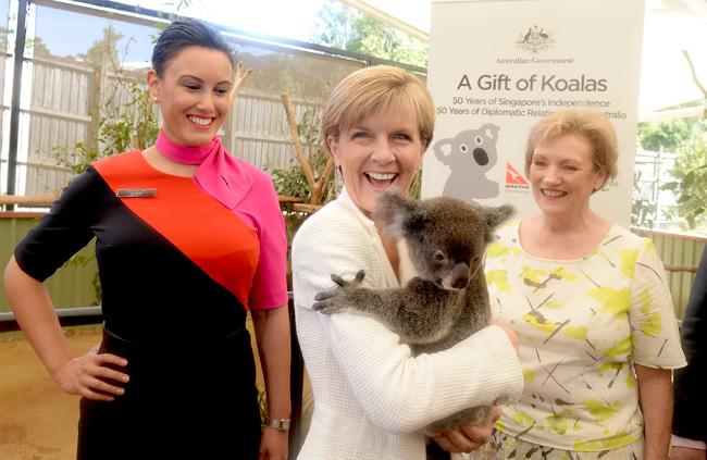 Julie Bishop Gifts Four Koalas To Singapore