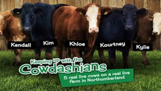 'Keeping Up With The Cowdashians' Is A Thing That Exists Now