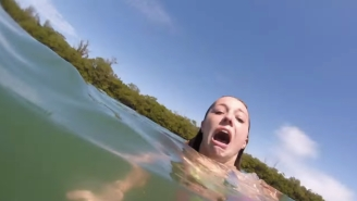 Watch This Spring Breaker Freak The Hell Out When A Manatee 'Attacks' Her