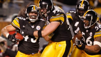Troy Polamalu Announced His Retirement After 12 Seasons