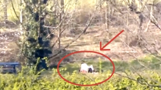 This British Couple Was Caught Boning In The Middle Of A Park In Broad Daylight