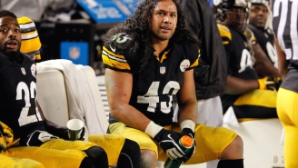 Troy Polamalu Of The Pittsburgh Steelers Has Retired After 12 Seasons