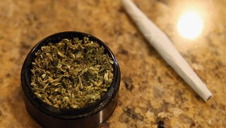 Two Florida Parents Were Arrested For Bribing Their Kids With Weed To Do Chores