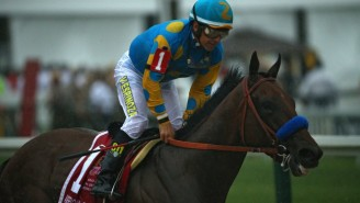 Watch American Pharaoh Dominate To Win The Triple Crown For The First Time In 37 Years