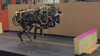 MIT's Robot Cheetah Can Now Dodge Obstacles When It Runs You Down