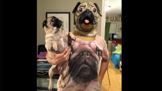 Behind The Viral Image: 'Pug Man' Tells The Story Behind His High-Level Dog Troll