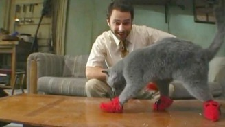 From Kitten Mittons To Rum Ham: These Are The Best 'It's Always Sunny In Philadelphia' Inventions