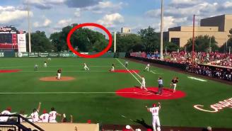 This 90-Foot Bat Flip Is The Greatest Baseball Walk-Off Celebration