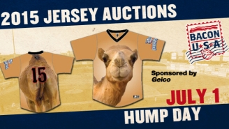 A Minor League Baseball Team Is Wearing Geico 'Hump Day' Jerseys