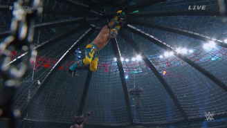 The Best And Worst Of WWE Elimination Chamber 2015