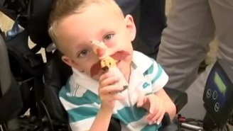 Man Auctions Off His Massive Toy Collection To Help An Adorable Boy Get A New Wheelchair