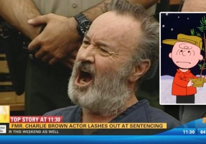 The Former Child Actor And Voice Of Charlie Brown Pled Guilty In A Cop-Killing Conspiracy