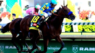 How The Beautiful American Pharoah 'Sports Illustrated' Cover Photo Came To Be