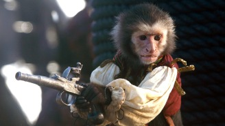 Jack The Monkey From 'Pirates Of The Caribbean' Bit A Woman's Ear
