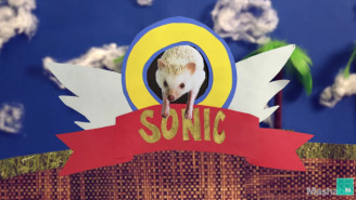 If 'Sonic The Hedgehog' Existed In Real Life, He'd Probably Look A Lot Like This
