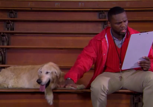 Watch 50 Cent And A Golden Retriever Coach Basketball In The Fake Trailer For 'Coach Bud'