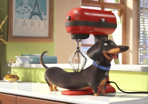 Find out why 'The Secret Life of Pets' with Louis C.K. is next summer's smash hit