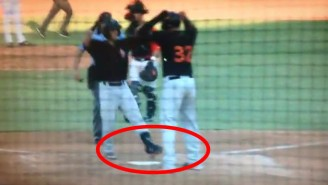 A Minor League Baseball Team Lost A Game In The Most Brutal Way Imaginable