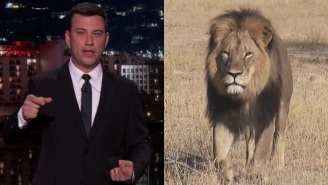 Cecil The Lion's Memorial Fundraiser Led By Jimmy Kimmel Has Already Raised A Huge Amount Of Money