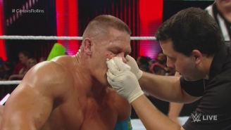In Tribute To John Cena's Face, Here Are Nine Other Memorable WWE Broken Noses