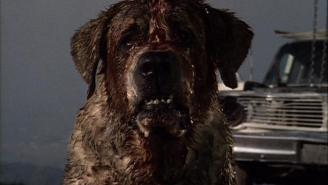 'Cujo' Is Being Remade As 'C.U.J.O.: Canine Unit Joint Operations'