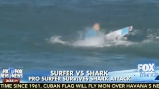 Fox News Host: Why Don't They Clear The Ocean Of Sharks Prior To Surfing Competitions?