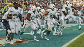 The Miami Dolphins Will Be The AFC's Best Team, According To This Harvard Study