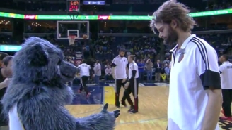 Robin Lopez Attempts To Explain His Ongoing Beef With NBA Mascots
