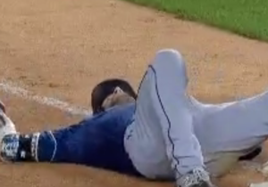 This Fearsome Bird Terrorized Rays Outfielder Kevin Kiermaier And Knocked Him Over
