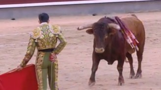 Things Didn't Go Well For This Bullfighter, And He Took A Horn Through The Neck As A Result