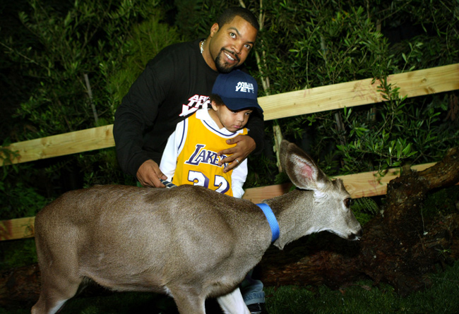FYI, the deer came to the premiere.